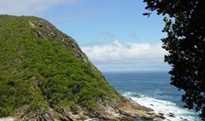 Western Cape - Garden Route